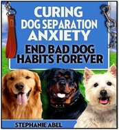 curing-dog-anxiety